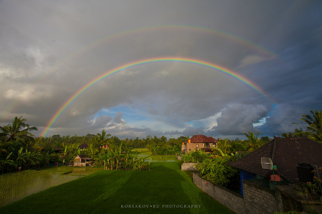 Rainbow in the rice fields (Bali)